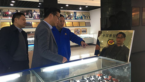 Zhang Zhunan , Vice Mayor of Tongcheng visited our company to investigate industrial economy