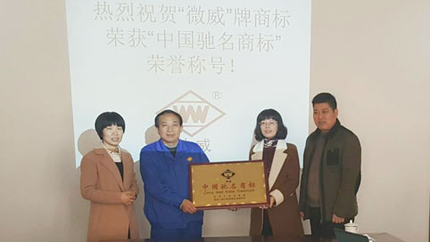 Anhui Weiwei Rubber Parts Group Co. Ltd. won the
