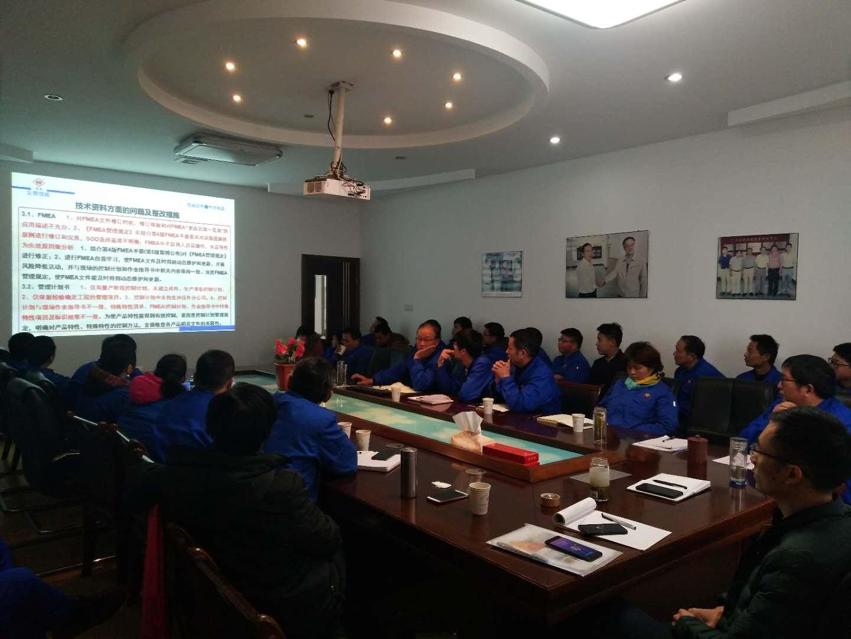 安徽微威胶件集团召开2018年度管理评审会议(图1)
